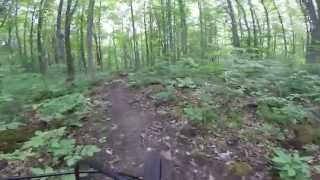 GoPro video of Agreement Forest and Currie Tract Trails.