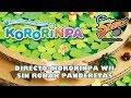 Directo: Kororinpa wii sin Robar Panderetas