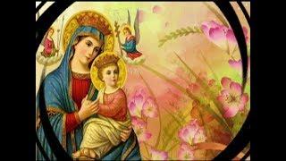Ngày Thứ Bảy   Tuần Cửu Nhật Kính Đức Mẹ Hằng Cứu Giúp:Mẹ Là Đấng Giữ Kho Thiên Chúa..