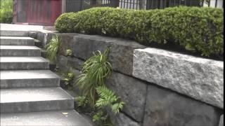 アガパンサスが満開の「鎌倉花の寺」-大巧寺は駅前3分で四季折々の花が咲く