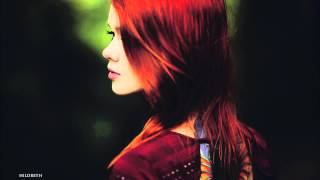 BEST ELECTRO HOUSE SUMMER MIX 2013 + PLAYLIST (ONLY TRACKS BY K-391) 【HD】【HQ】
