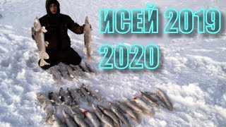 Зимния рыбалка в северном казахстане
