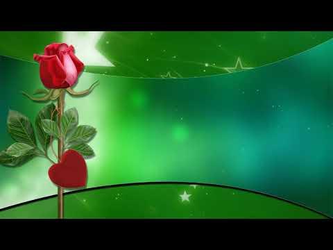 ФУТАЖ  с розой для вашего поздравления