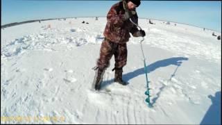 Рыбалка на озере ик омской области