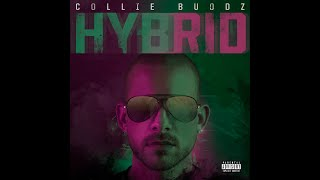 Collie Buddz Everything Blessed Feat Tech N9ne