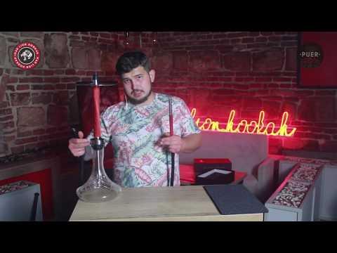 Om penis și erecție