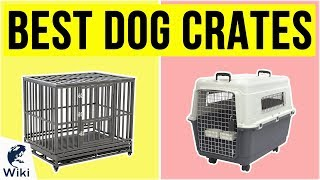 10 Best Dog Crates 2020