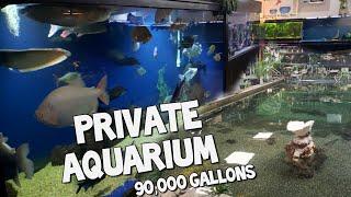 The World's Largest Private Home Aquarium Tour - MONSTER FISH - OHIO FISH RESCUE