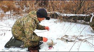 Зимняя рыбалка на нижней волги