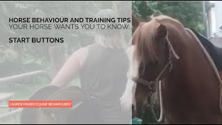 Start Buttons and Horse Training