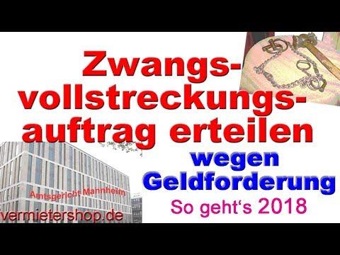 Zwangsvollstreckungsauftrag  wegen  Geldforderung - seit 2017 Neues GVZ-Formular -Vermietershop.de