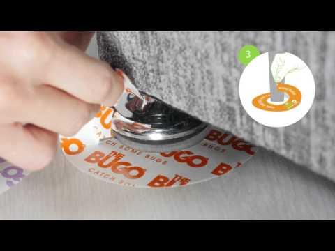 Video preview Bedwantsen val (12 stuks)