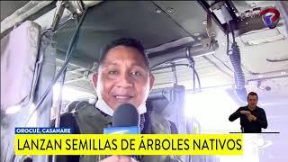 BOMBARDEO  O LLUVIA VERDE DE ESPERANZA