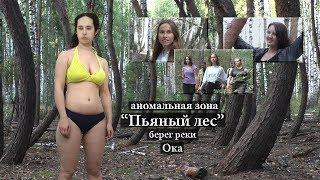 """""""Пьяный лес"""", берег реки Ока"""