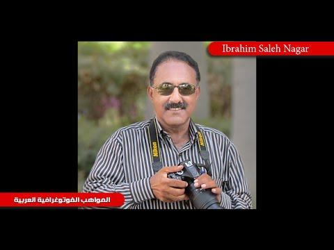 إبراهيم صالح النجار - مصر