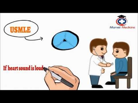 usmle heart Review for the usmle with gold standard step 1 audio-transcription-video for the usmle step 1 review 54 11 cardiovascular physiology intro (1 of 3.