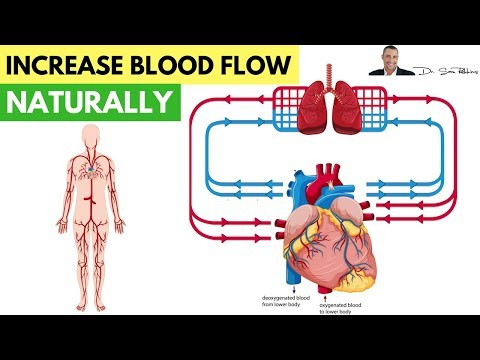 ❤️ How To Increase Blood Flow & Circulation Naturally - by Dr Sam Robbins