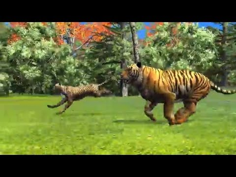 Animal Race - Cheetah Vs Tiger Running Race for Kids | Who Will Win?