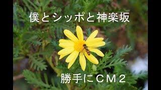 mqdefault - 「僕とシッポと神楽坂」勝手にCM2!!(ぬれねずみ)