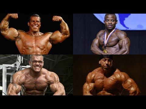 La force dans les muscles