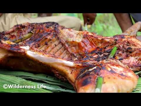 Primitive Technology - Find PIG by Trap in Forest - grilled Pig Eating extremely delicious