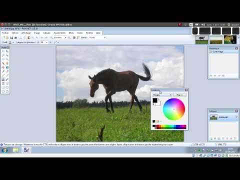 Tuto Video Rogner Une Image Avec Paint Net Blog Du Prof T I M