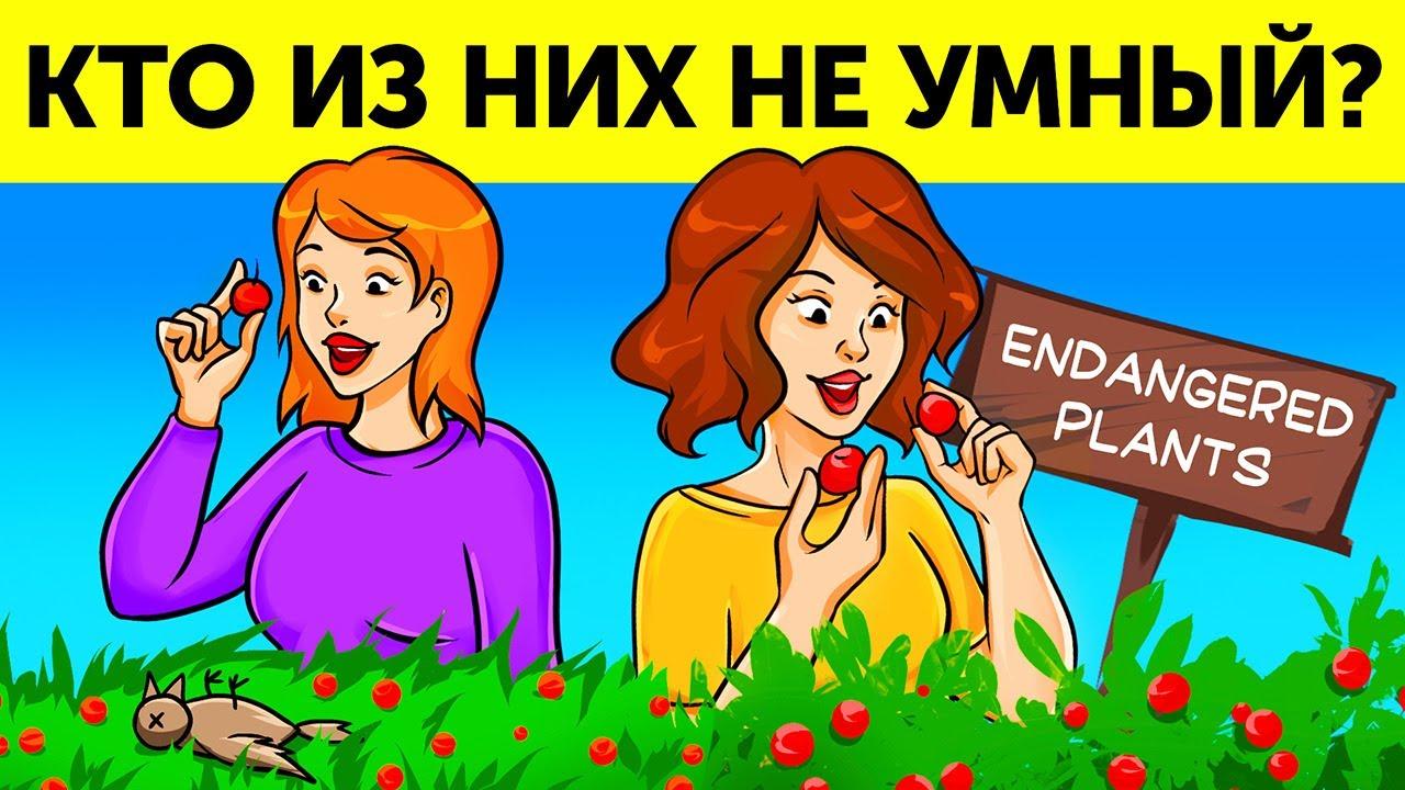 Головоломки (обложка Кто не так уж и умен)