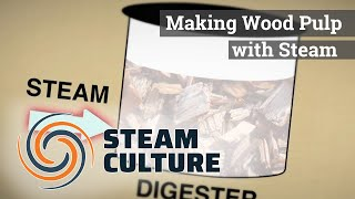 Making Wood Pulp with Steam - Steam Culture
