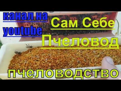 Пчеловодство,расширение,сбор пыльцы с улья