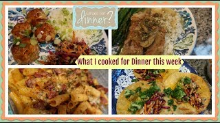 EPIC  What I cooked for Dinner this week   Lots of Dinner Ideas!