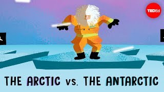 The Arctic vs. the Antarctic – Camille Seaman