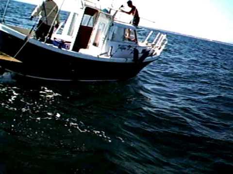 I vestiti per pescare in Belarus in linea immagazzinano