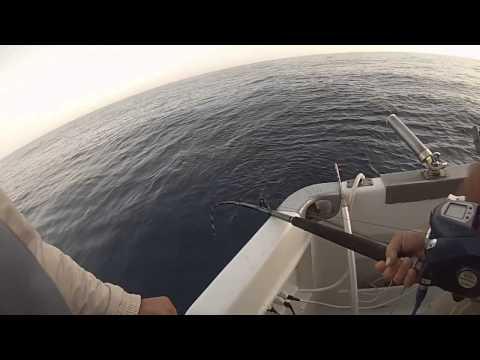La pesca del russo video per guardare