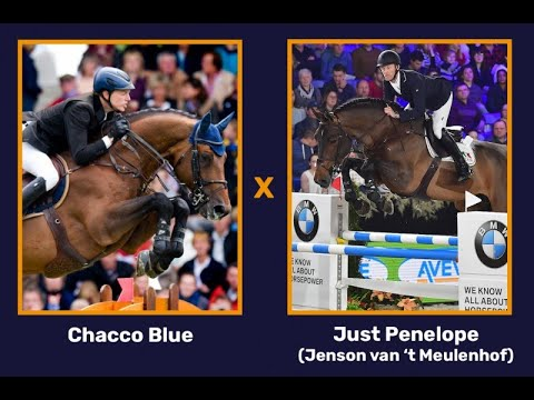 Chacco Blue x just Penelope