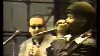 Big Walter Horton & Charlie Musselwhite