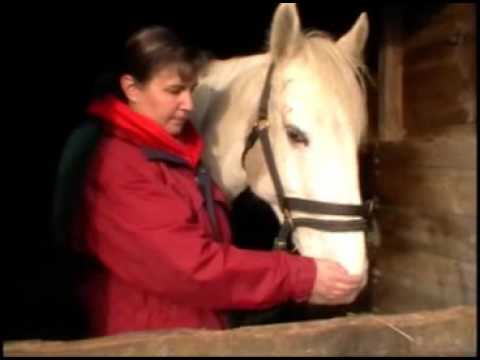 How to do the Equine Breathing 1N (1 nostril) method – part 1