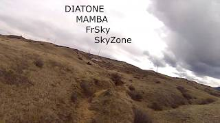 FPV freestyle drone DIATONE Mamba Skyzone FrSky 23 March 2020 coloradojerry