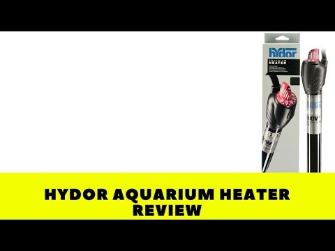 Hydor Submersible Glass Aquarium Heater review: nuked my tank
