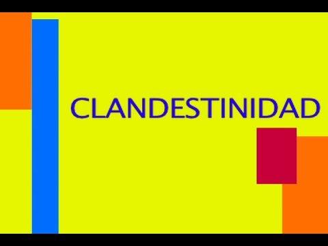 Video: Mujeres informan sobre la situación del aborto legal en Salta