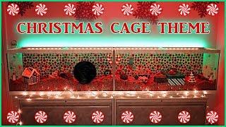 Fairy Theme Hamster Cage Tour Setup - Video hài mới full hd