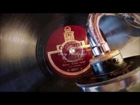 "Stefan Witas: ""Ave Maria"" (Fr.Schubert) - in Polish"