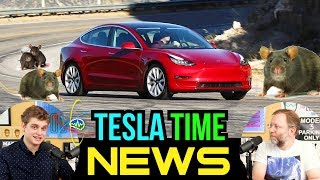 Tesla Time News - Tesla Model 3: Last Bet the Company... and Rats