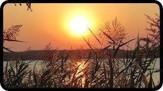 Mit dem Ton der Natur klingen – Ralf Gehlert