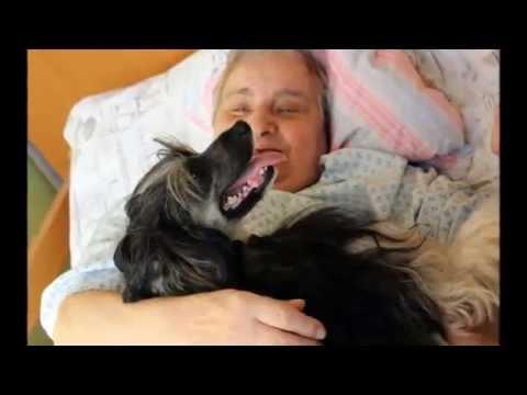 Video: NADACE AGEL pomáhá