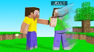 EVERYTHING You TOUCH = ERASED From MINECRAFT! (gone forever)