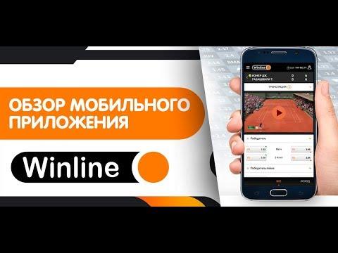 Приложение Винлайн – обзор мобильного приложения Winline