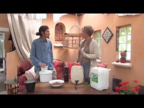Les moyens efficaces du microorganisme végétal de longle