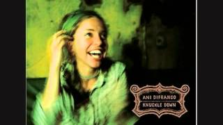 Ani DiFranco - Out of Range [Electric]