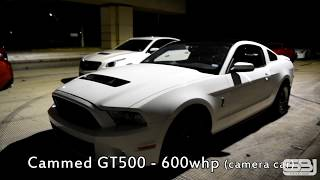 GT350 1/4 Mile Record & S550 Stick-Shift Record - Thủ thuật