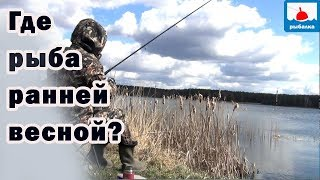 Отец для ловли рыбы витя и коля хотят